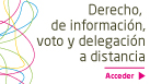 [ES][OR] derecho información, voto y delegación a distancia